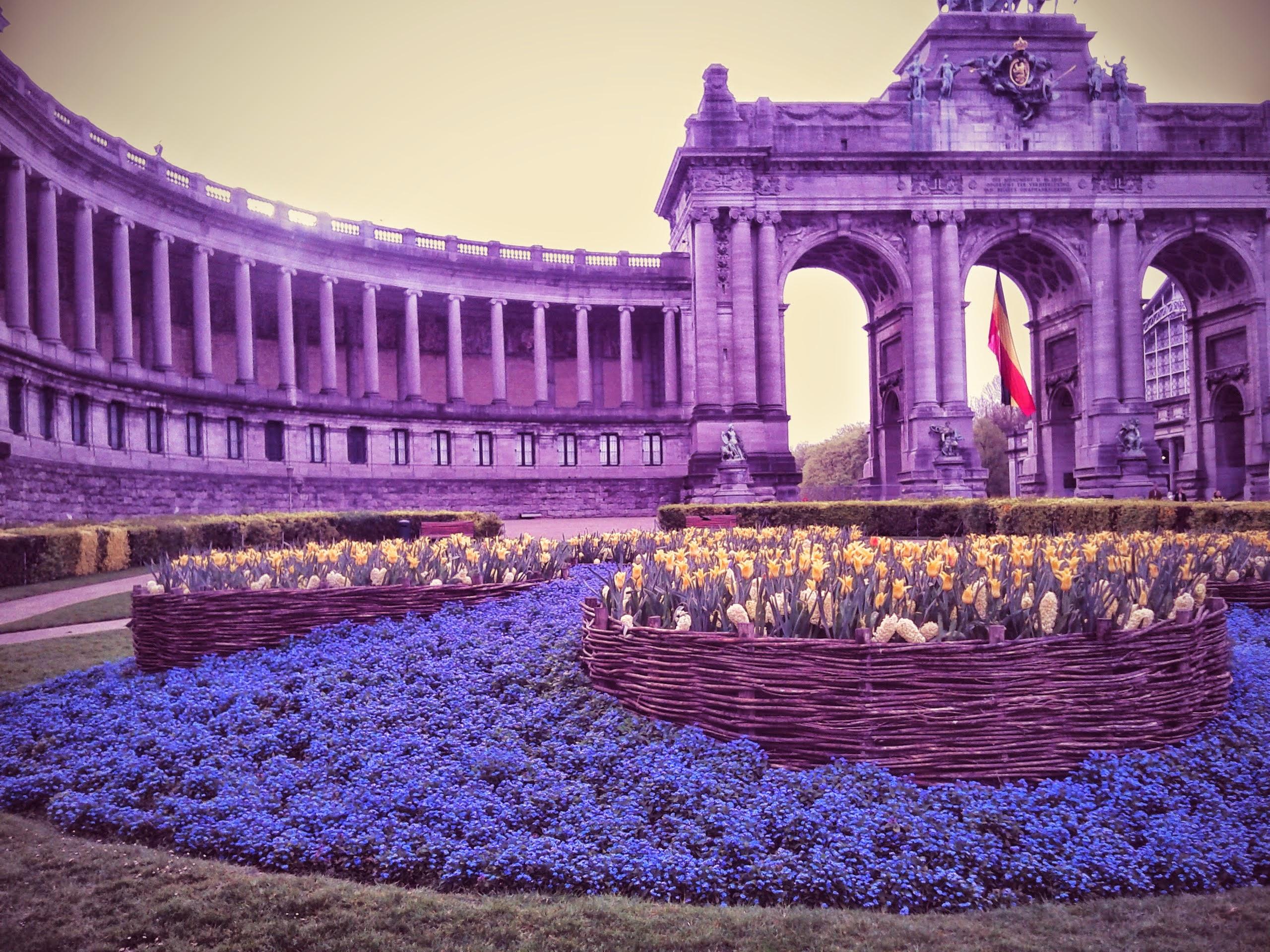 Les fleurs et le monument.