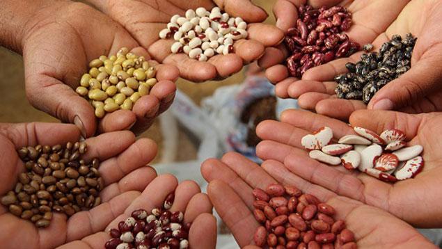 Echange de graines le 24 Mars!