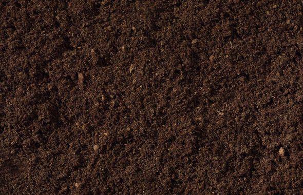 compost_1920po
