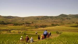 """Des vacances avec du sens : soirée """"Madagascar"""" @ À la Grande maison"""
