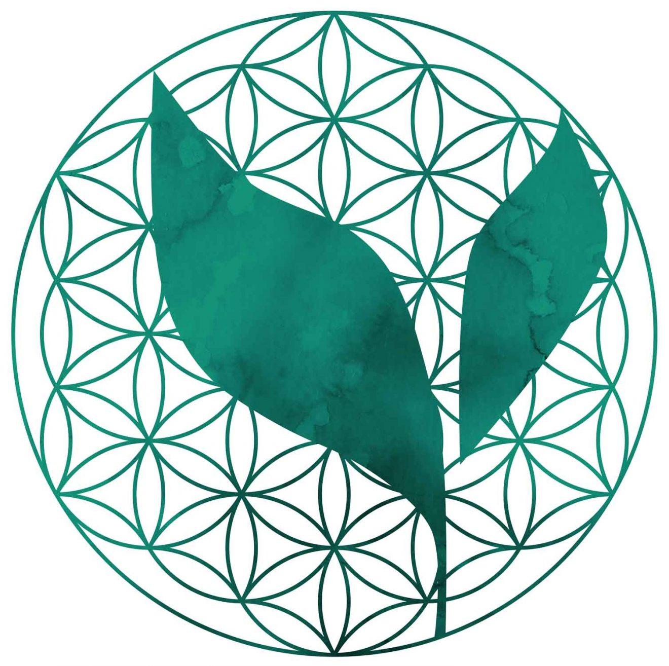 Logo Transition MSG 2020 02 09