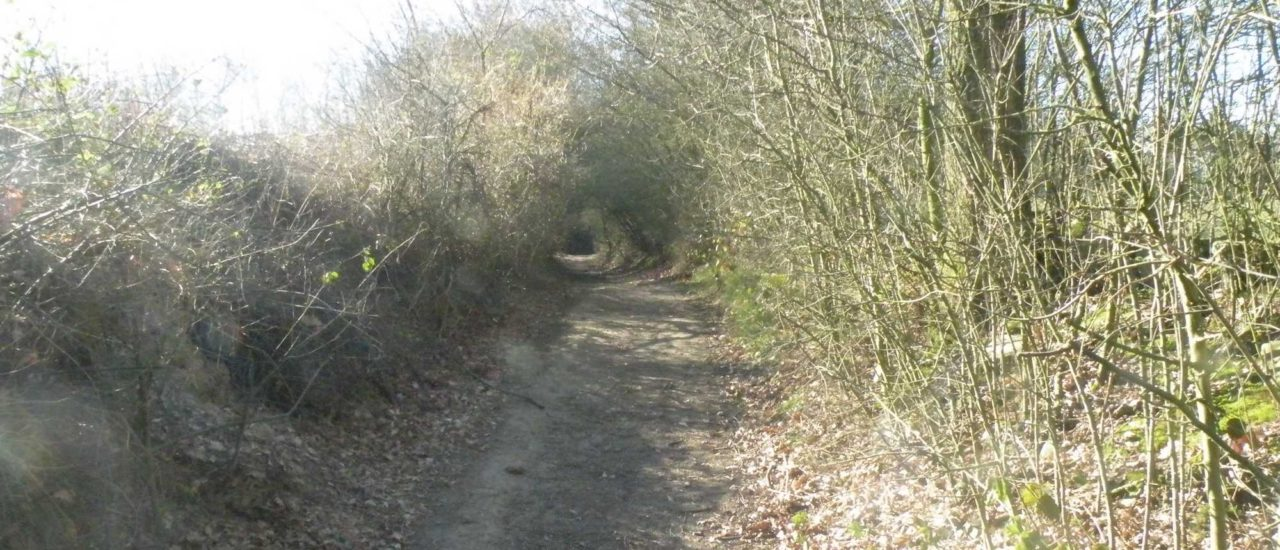 Parrainage de sentiers à Chastre sur Canal zoom